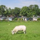 Maison Noord Holland: Maison Vakantiedorp Het Grootslag